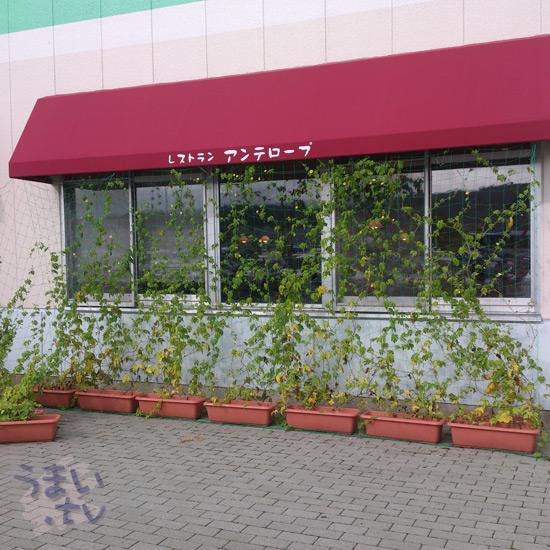 レストラン・アンテロープ 東部湯の丸サービスエリア(下り)