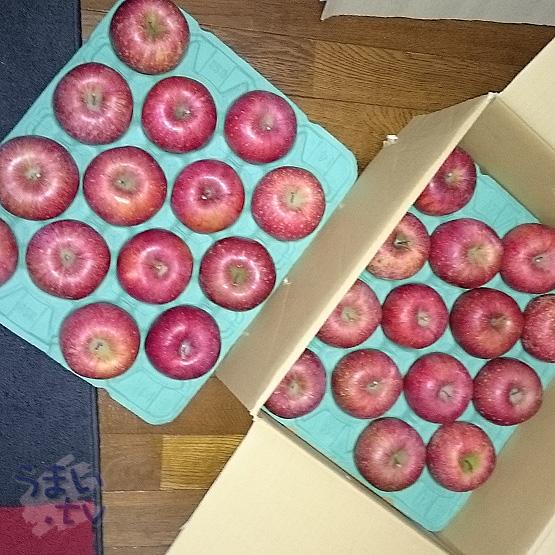 信州りんご「ふじ」