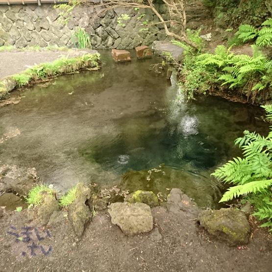 忍野八海二番霊場 お釜池