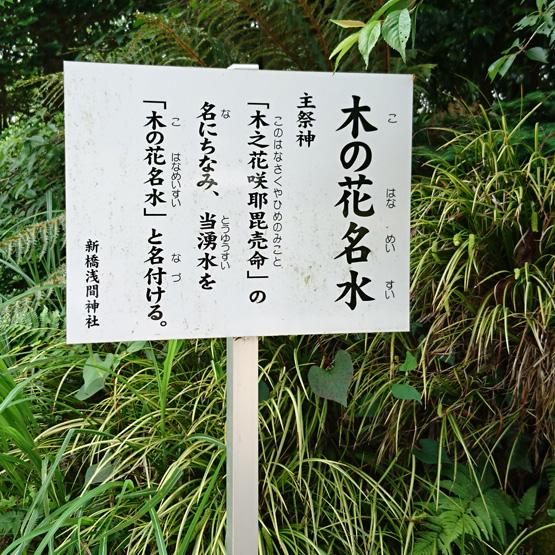 御殿場市 新橋浅間神社木の花名水