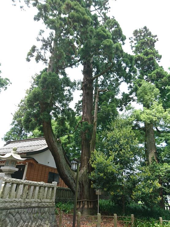 一幣司浅間神社