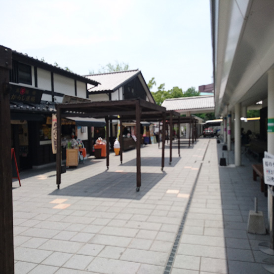城彩苑 桜の小路